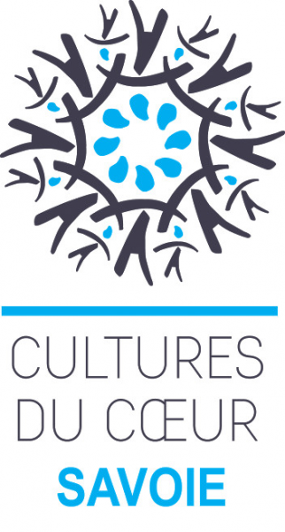 Accompagnement régulier de sorties culturelles