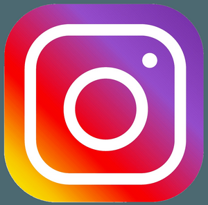 Gestion de l'Instagram de l'association GreenMinded