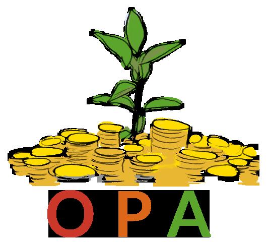 Responsable projet réseau national OPA