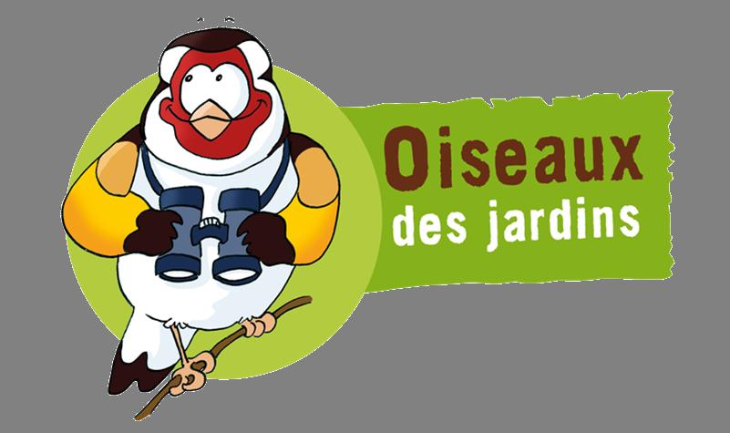 LPO : Observer et compter les oiseaux des jardins !